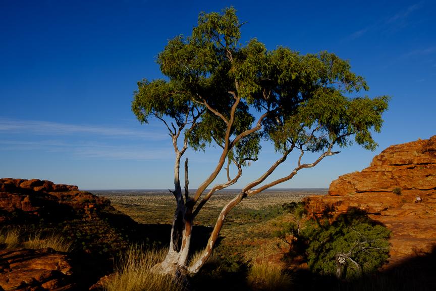 Uluru-7280.jpg