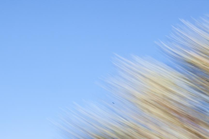 Uluru-9767.jpg