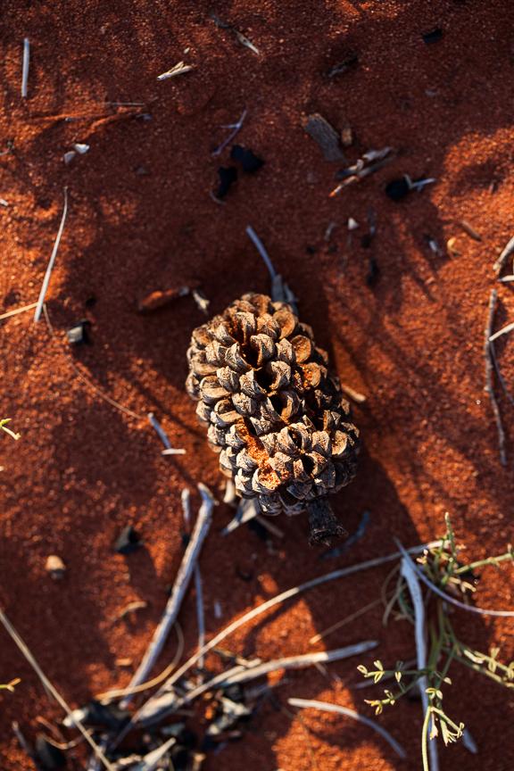 Uluru-9793.jpg
