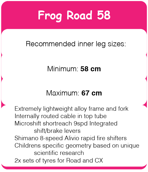 frogroad58.png