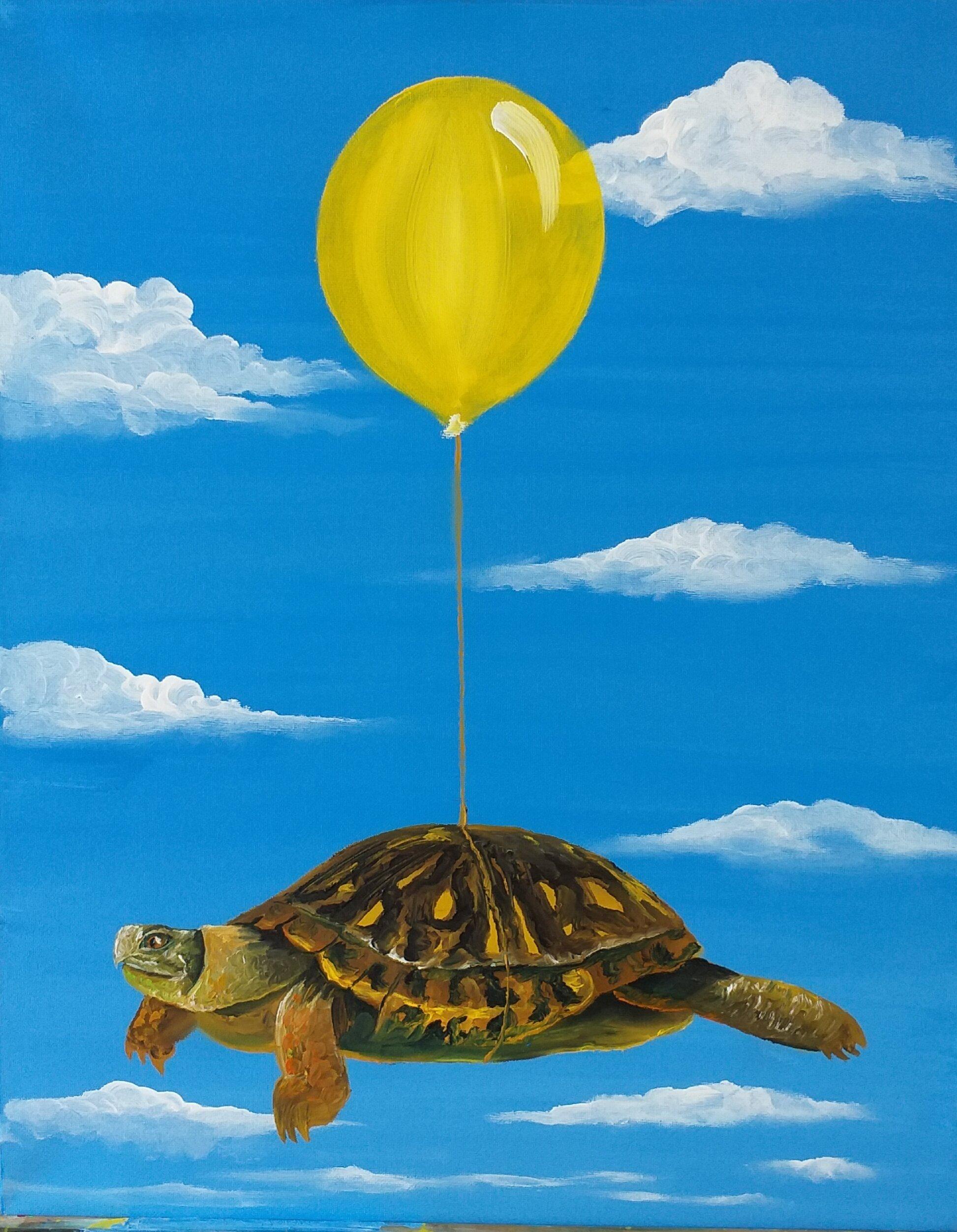 Flying turtle - 2019