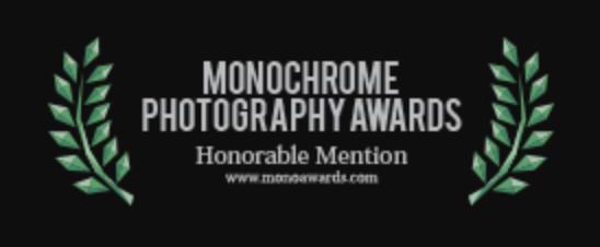 monochrome photography awards 2018