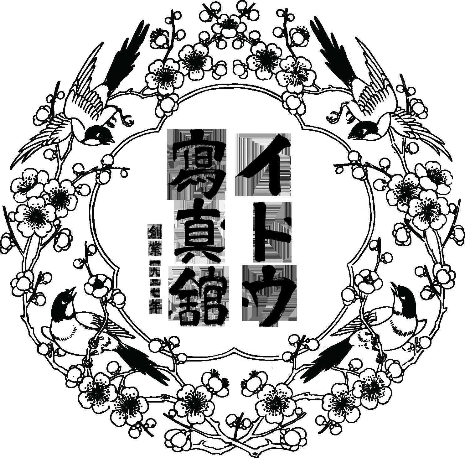 イトウ写真館 愛知県 津島市 ダゲレオタイプ 湿板写真 乾板写真 フイルム