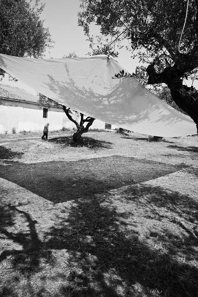 02_a-sense-of-place.jpg