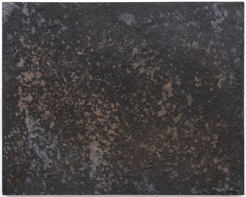 Norfolk Lichen