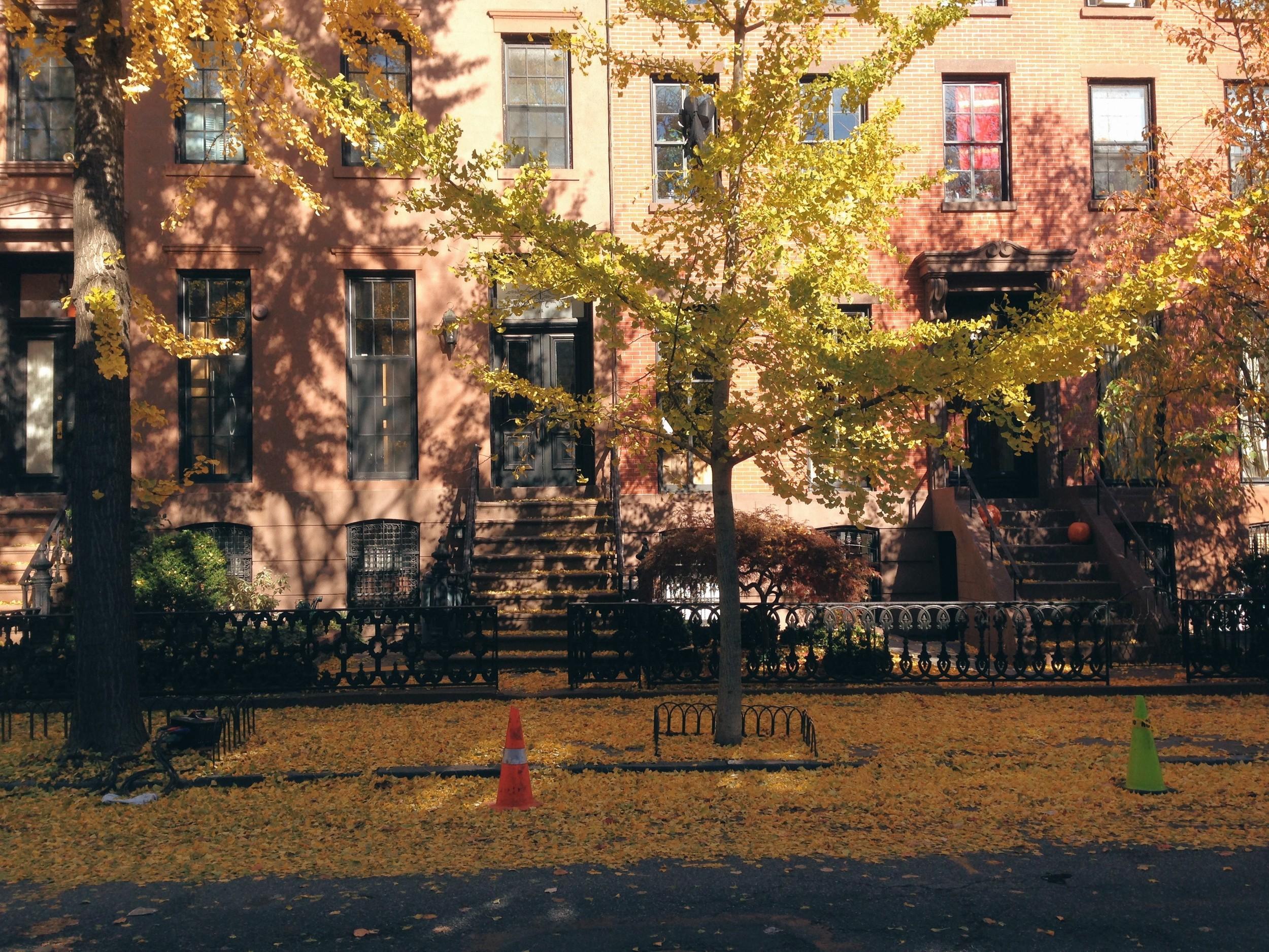 Brownstones at Boerum Hill, Brooklyn
