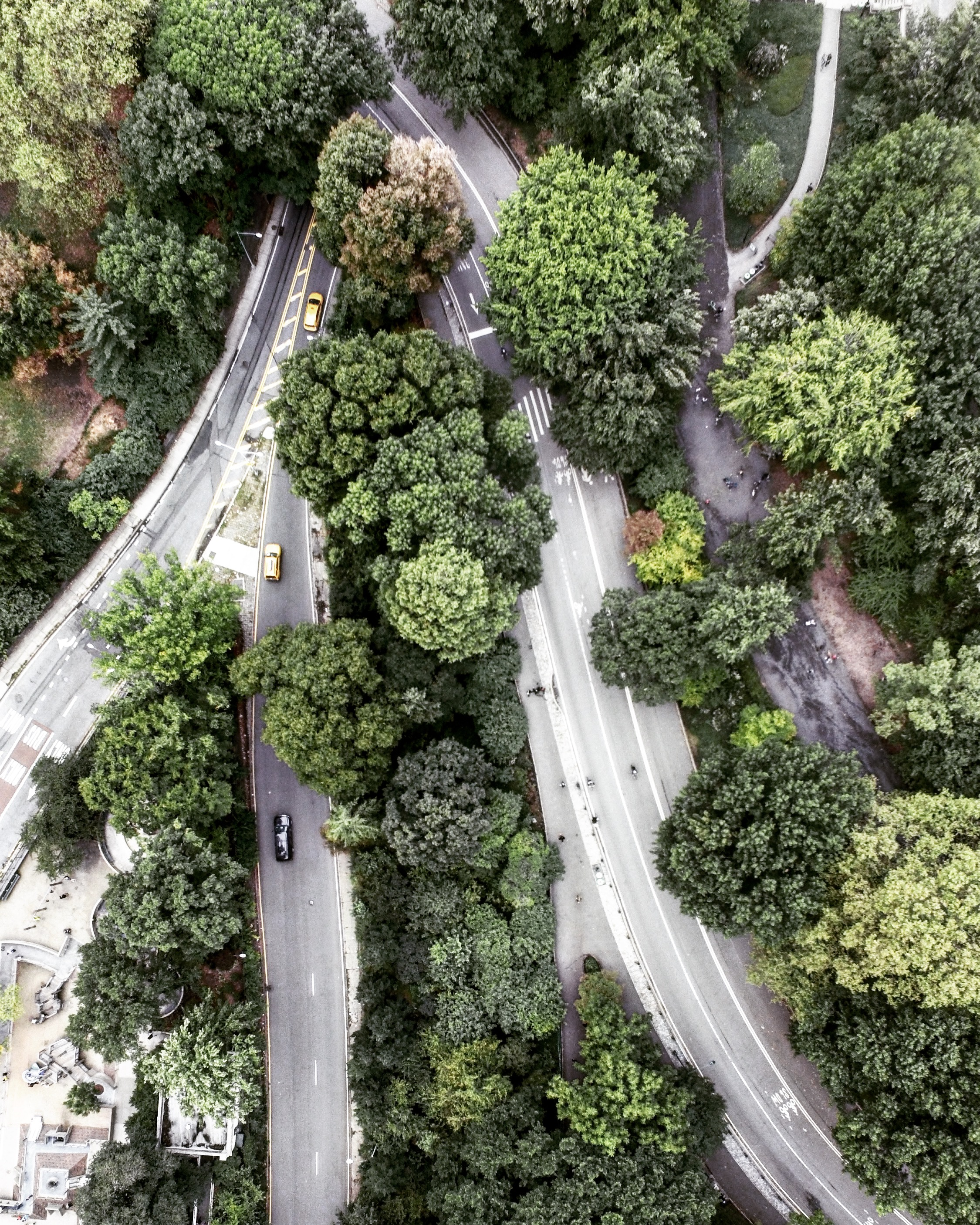 Aerial view of Central Park driveway