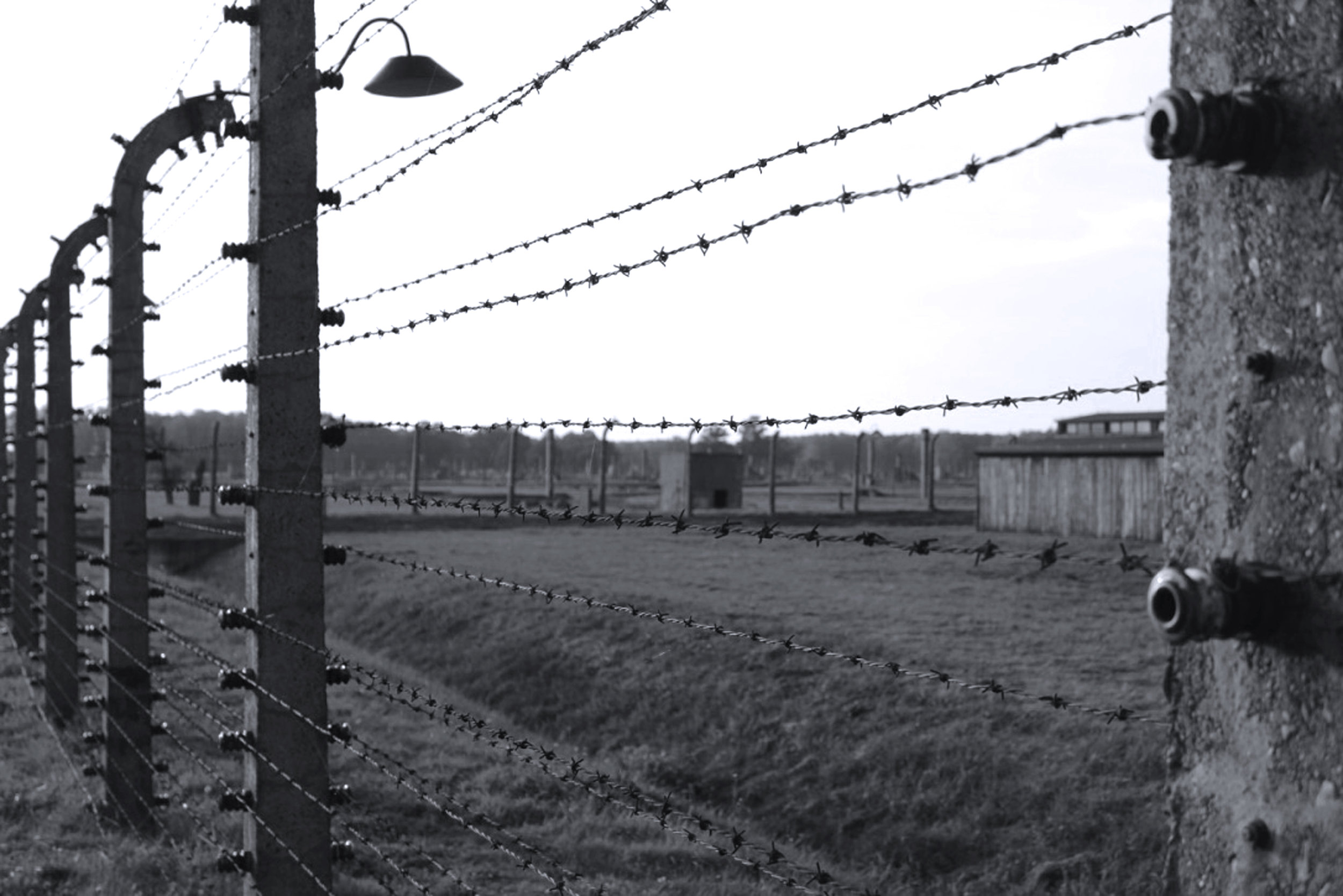 The fence around the camp (Auschwitz I and Auschwitz II – Birkenau ) was almost 14km long. Prisoners sometimes attempted to commit suicide by throwing themselves on the electrified wires.