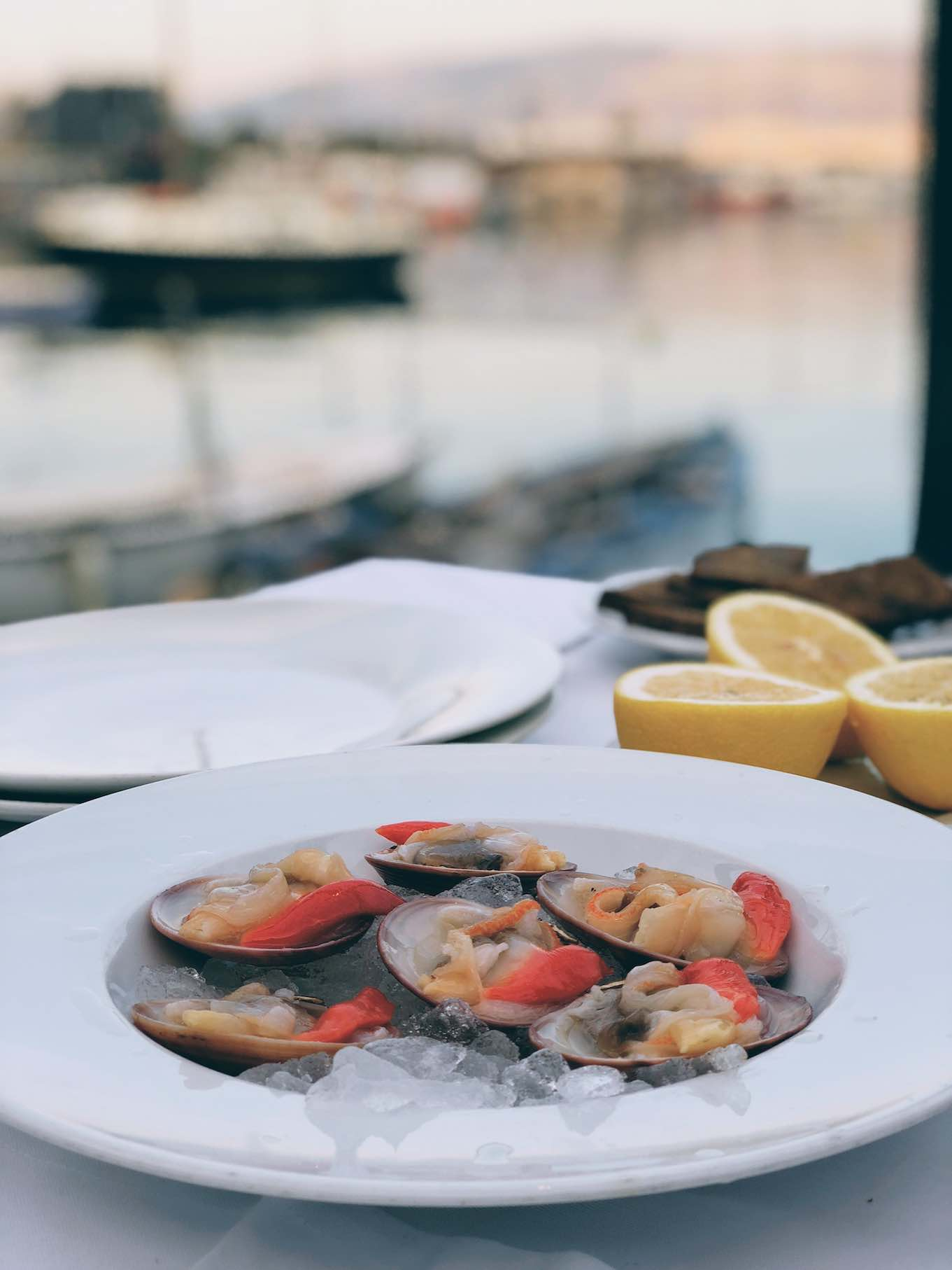 Gialisteres oysters sourced right from the sea