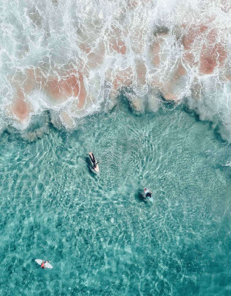 Image 3, Freshwater Beach, Sydney, Australia.jpg