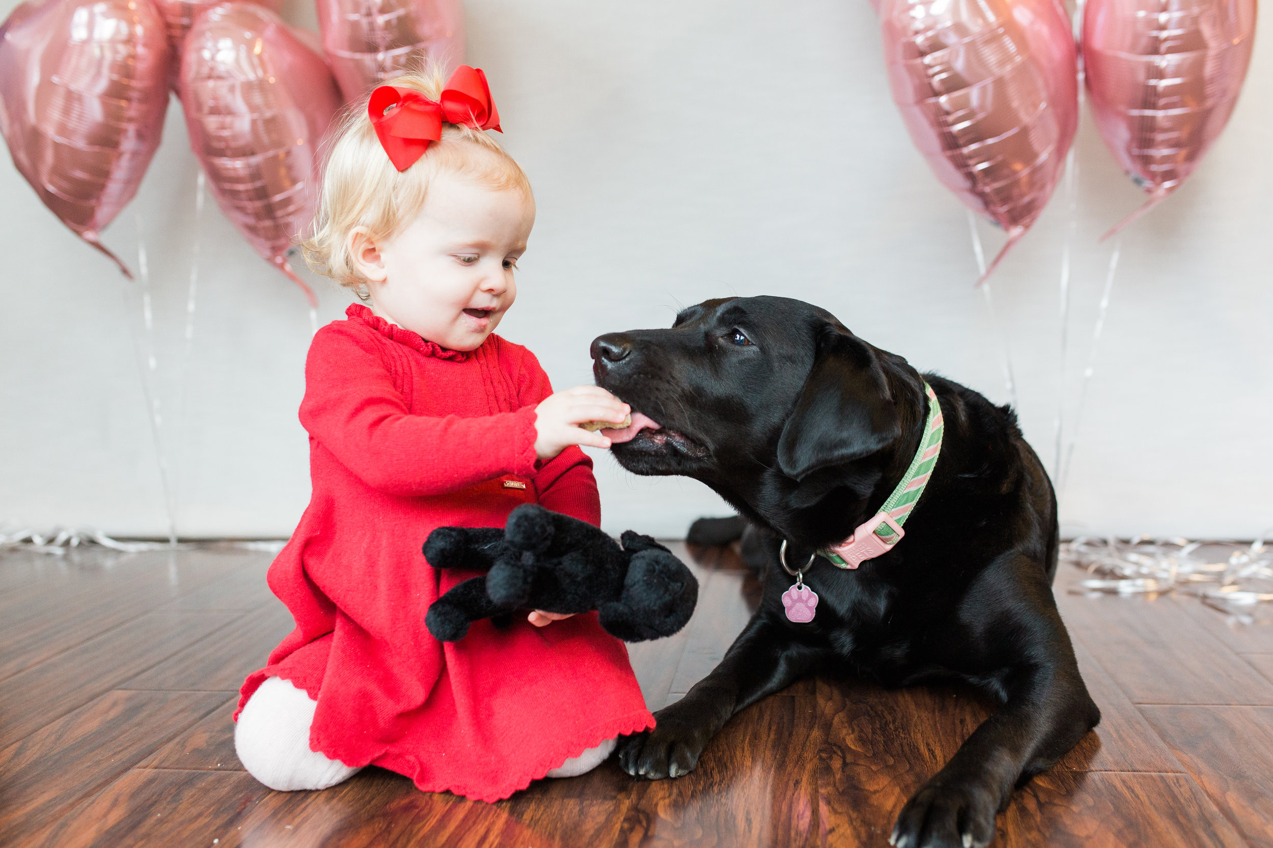 Oh and this photo of my niece sharing her Valentines cookies with my dog Chloe is a bonus favorite because it doesn't get much cuter than this!