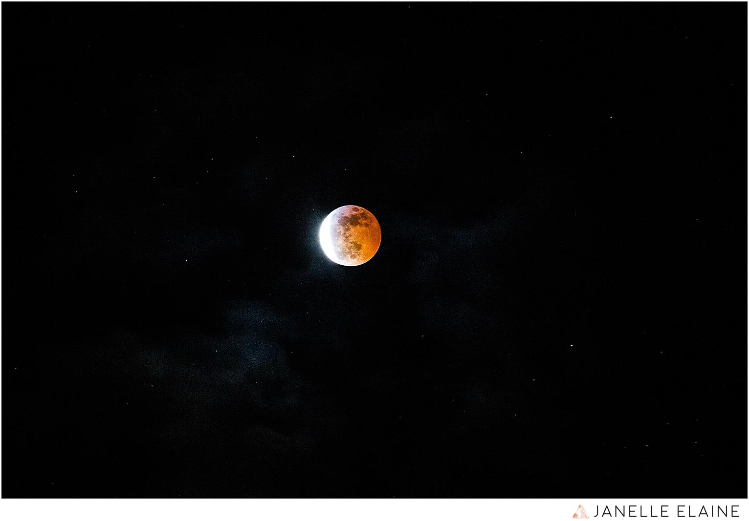 janelle elaine photography-seattle-washington-photographers-blood moon-1-4.jpg