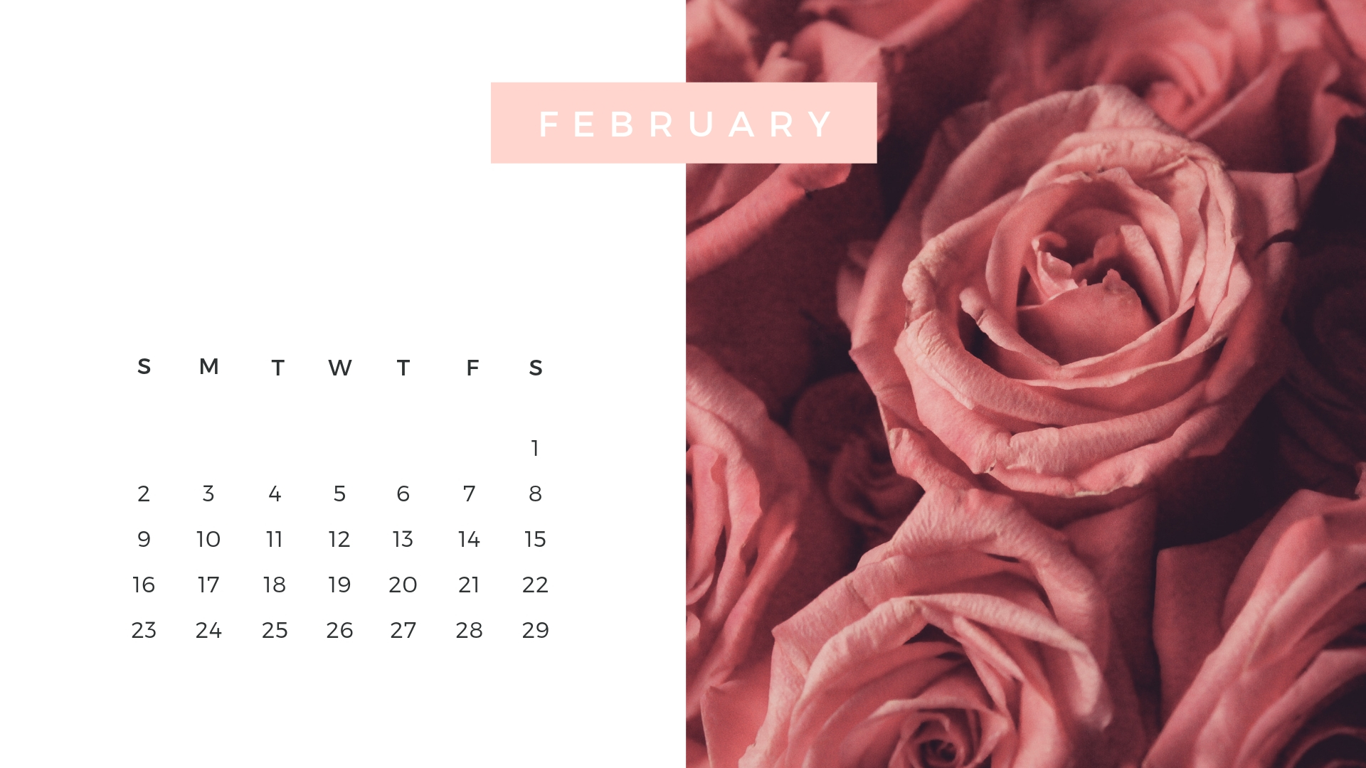 February Calendar Download.jpg