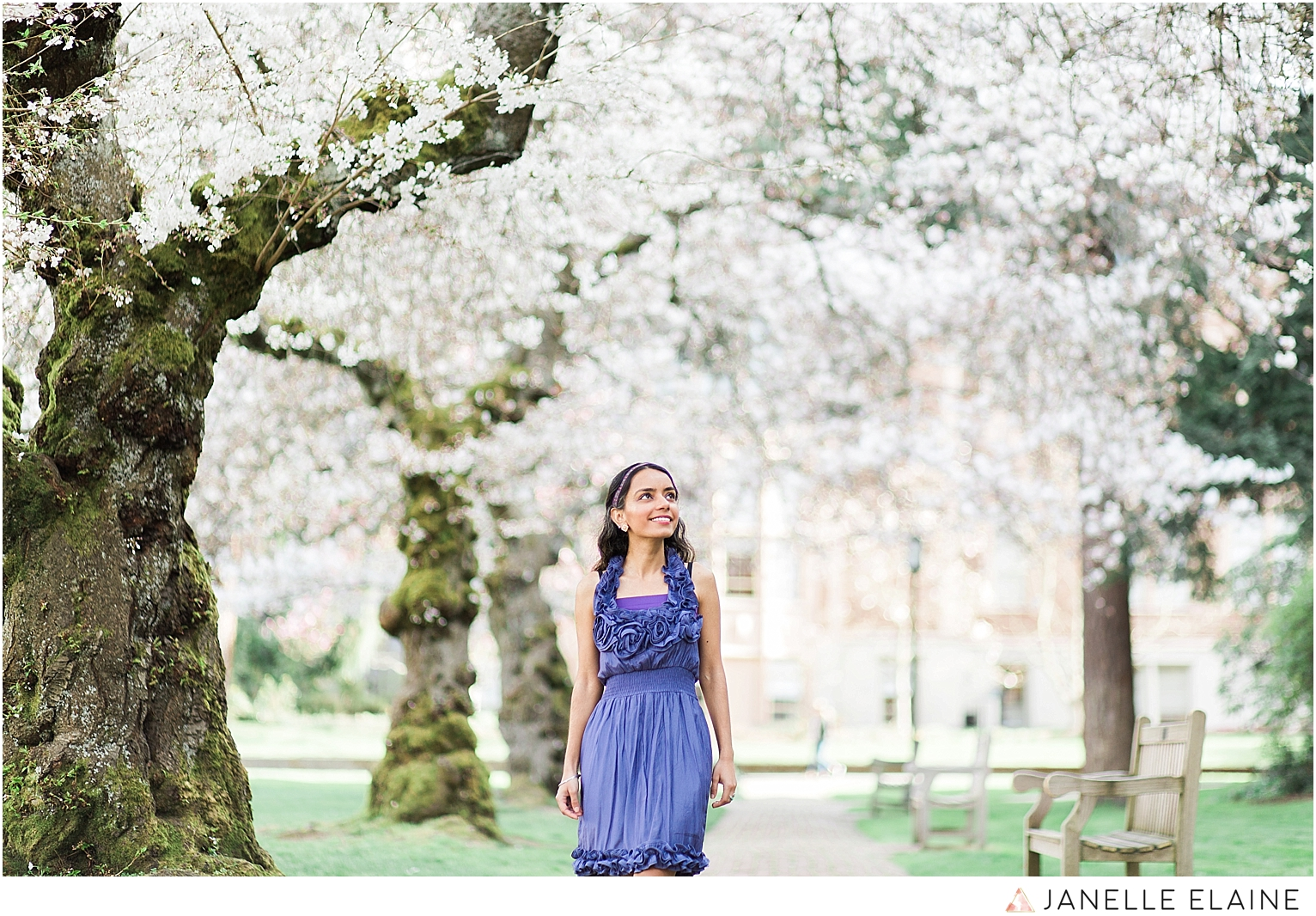 Sufience-Harkirat-spring portrait session-cherry blossoms-uw-seattle photographer janelle elaine-9.jpg