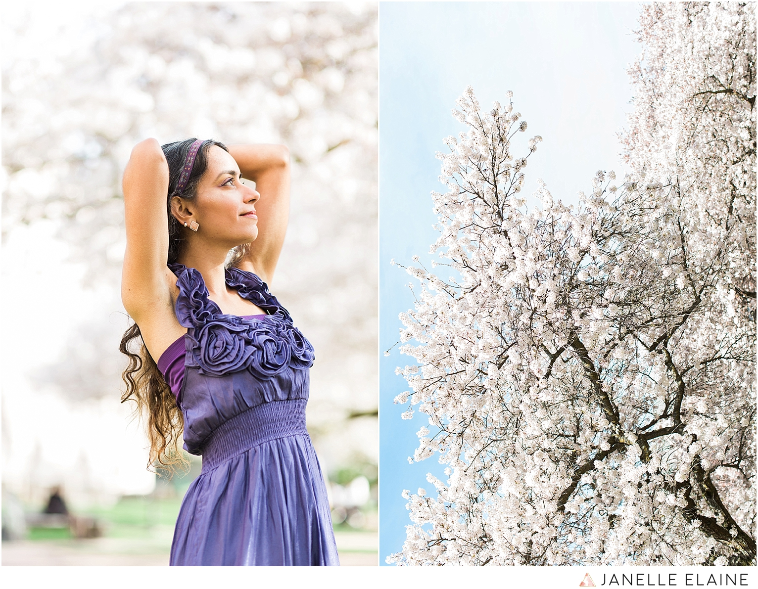 Sufience-Harkirat-spring portrait session-cherry blossoms-uw-seattle photographer janelle elaine-42.jpg