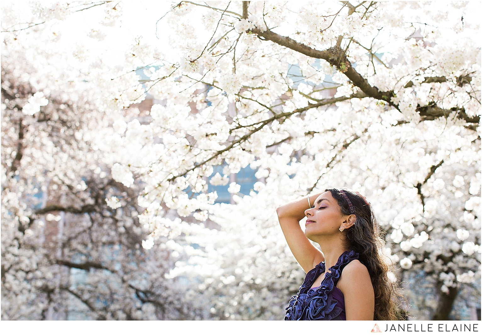 Sufience-Harkirat-spring portrait session-cherry blossoms-uw-seattle photographer janelle elaine-71.jpg