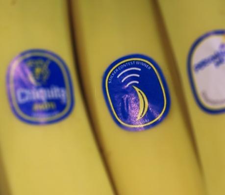 Chiquita banana sticker design contest winner
