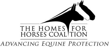 HorseCoalitionLogo_final_CS21.png