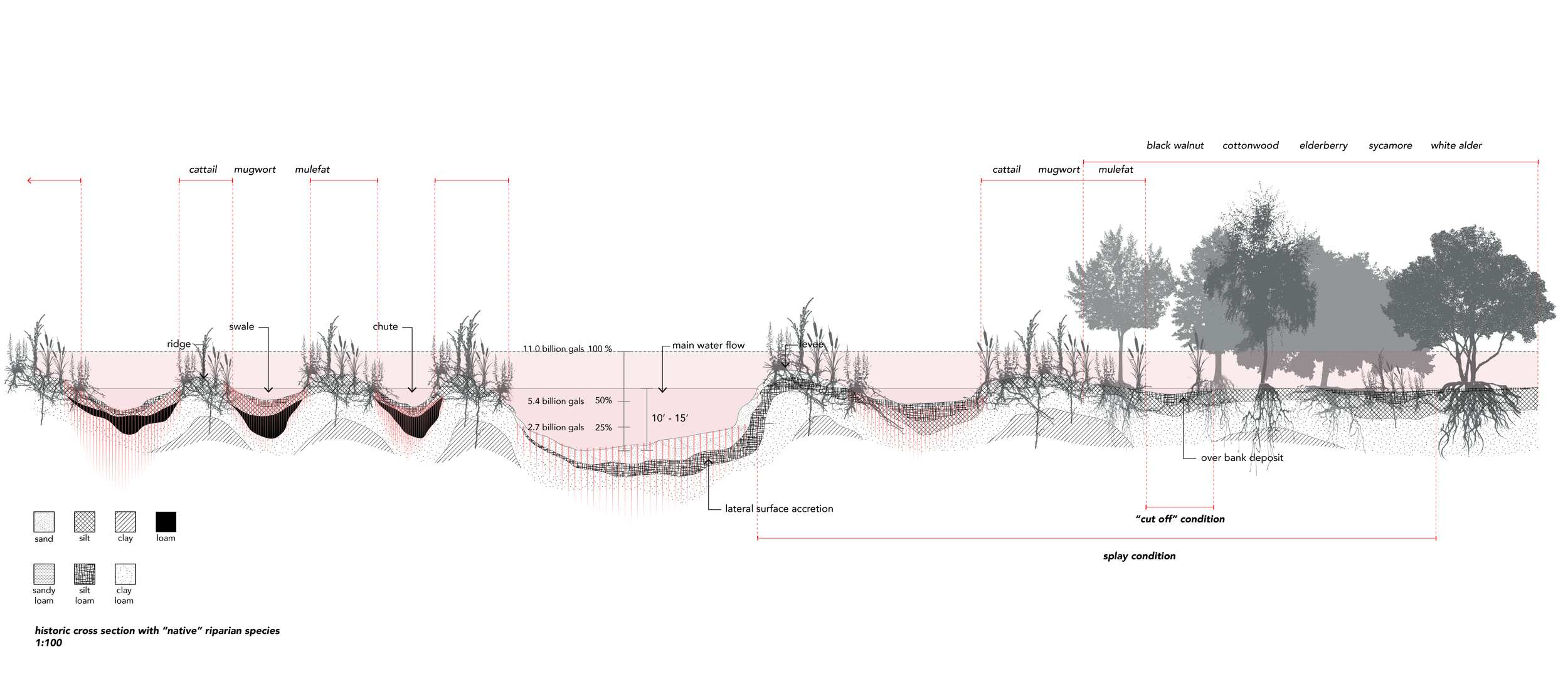 """Typical Historic Section  of the River (pre-channelization/concretization) with """" Native """" riparian species"""