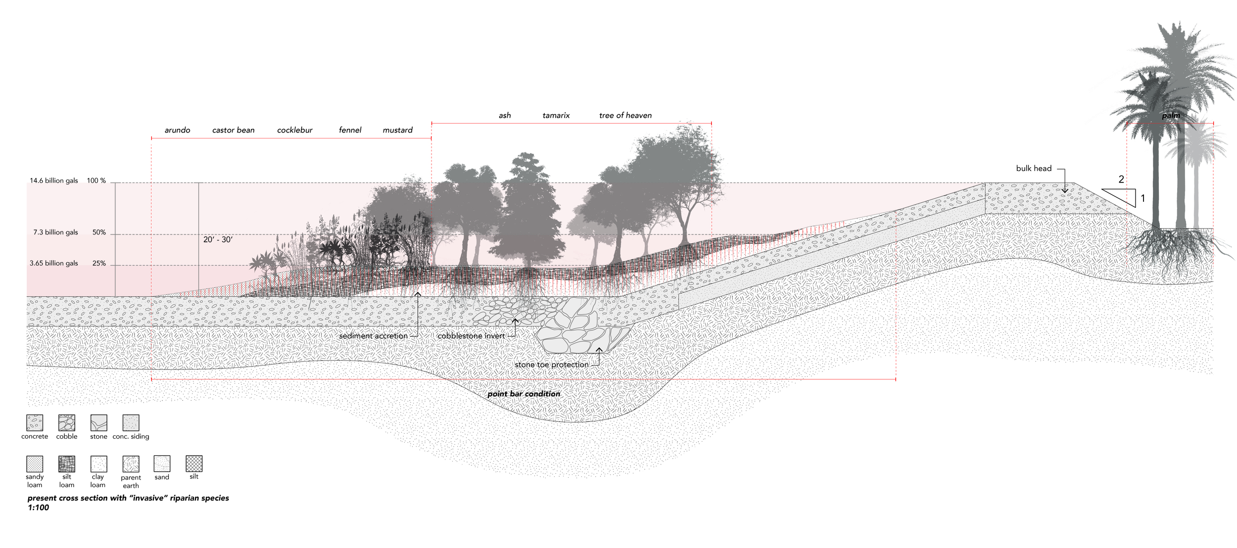 """Typical Present Section  of the River (channelized/concretized) with """" Invasive """" riparian species"""