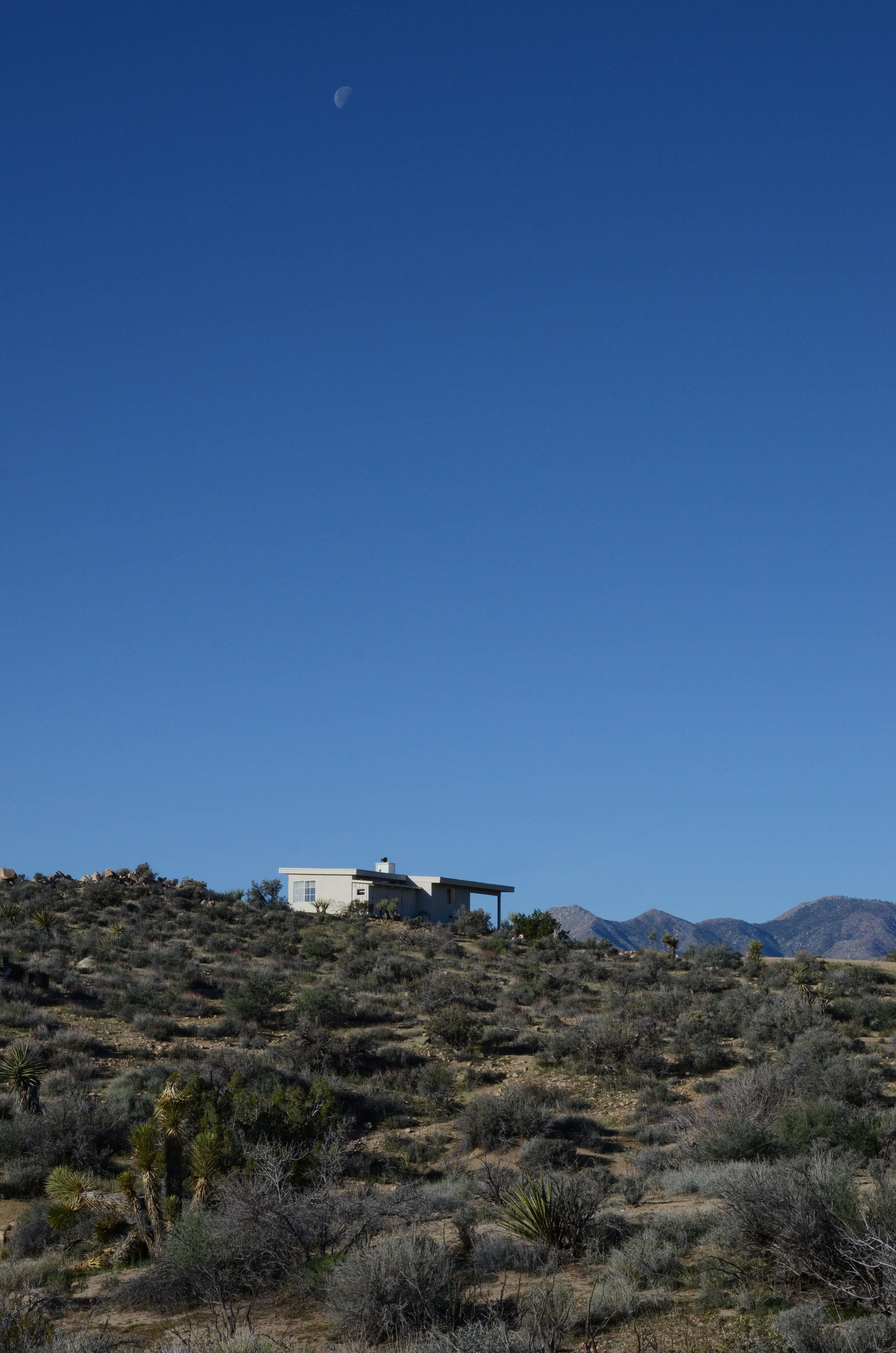 Los-Vientos-Hideaway-Looking East.JPG