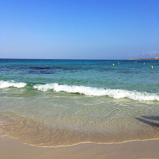 Bom dia mundo lindo! 😍💙☀️ #peace #sohappy #selfcare #gratefulheart #detailsoftheday #gratidão #mylittleinspirations #healthandwellness #nourishyoursoul #happymoments #mindfulness #inspiration #thingsilove #nourishyourbody #meditation #zen #serenity #starttheday #grateful #happy #hyggelife #inspire #beach #sea