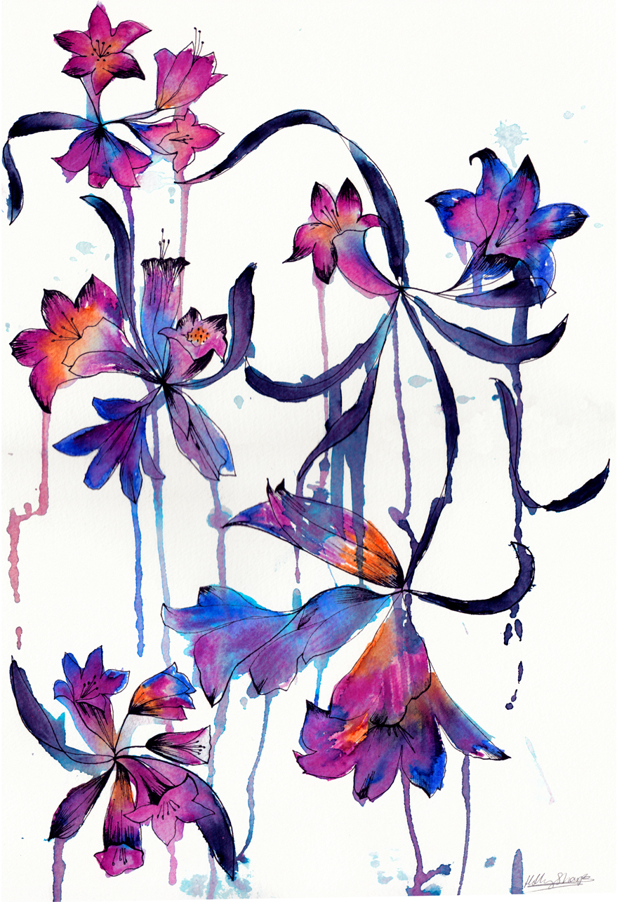 Drench watercolour Holly Sharpe for web.jpg