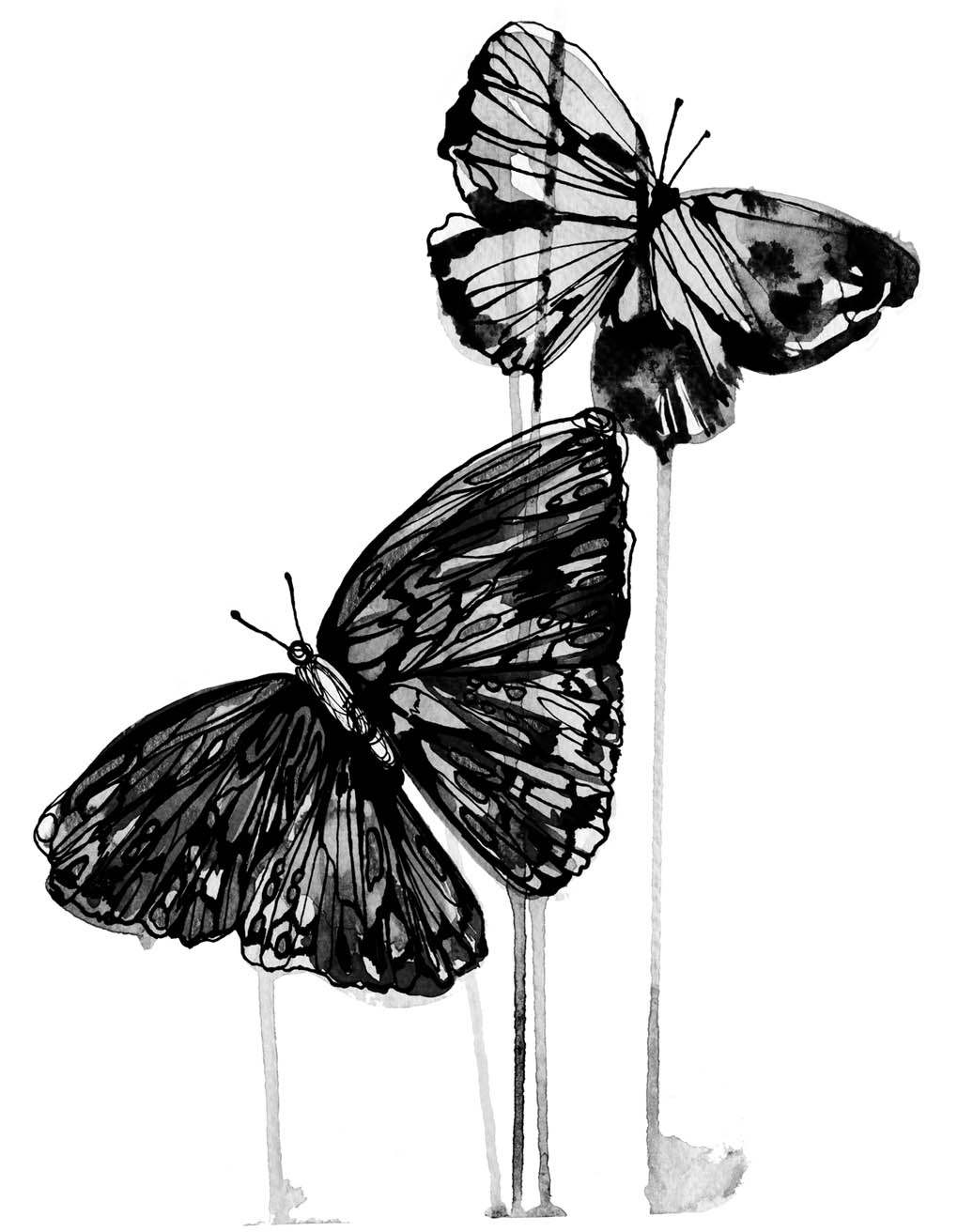 butterfly ink holly sharpe for web.jpg