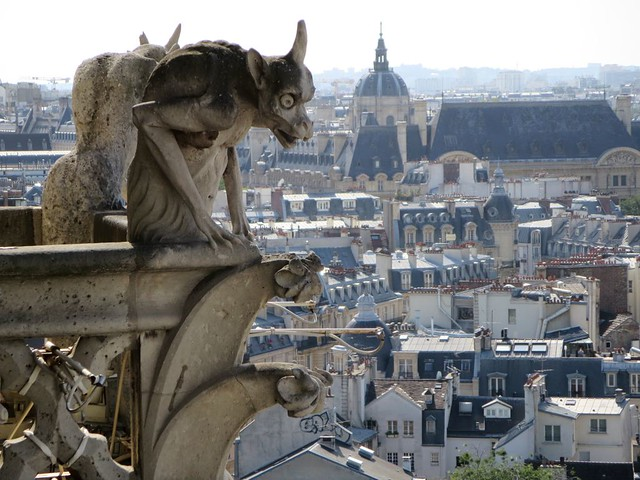 Gargoyles are my spirit animal. - Notre Dame Cathedral Pic courtesy of David Stanley.