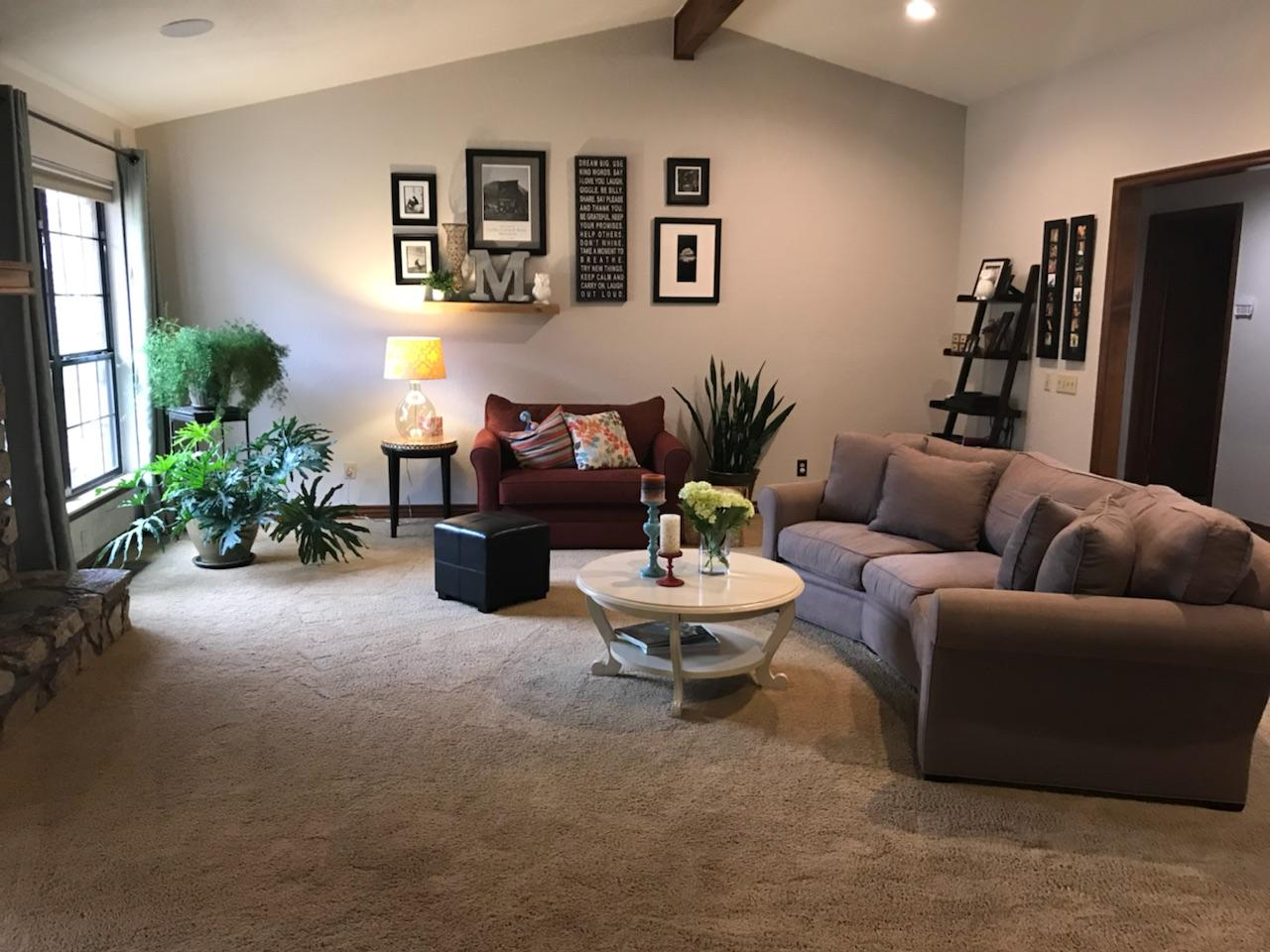 Mikaela living room before.jpeg