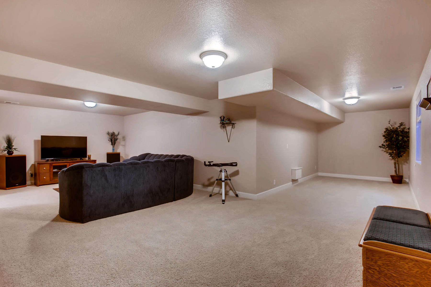 3119 57th Ave Greeley CO 80634-026-5-Lower Level Family Room-MLS_Size.jpg