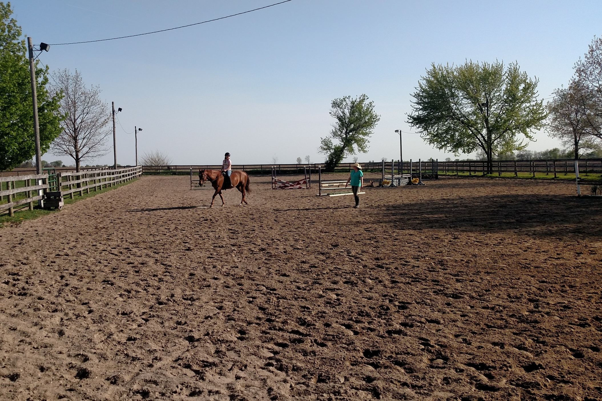 Teaching in Outdoor Arena