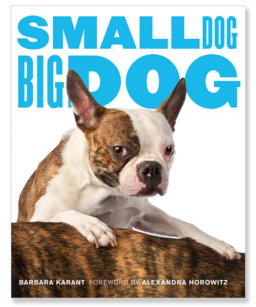 SmallDogBigDog_cover_MED.jpg