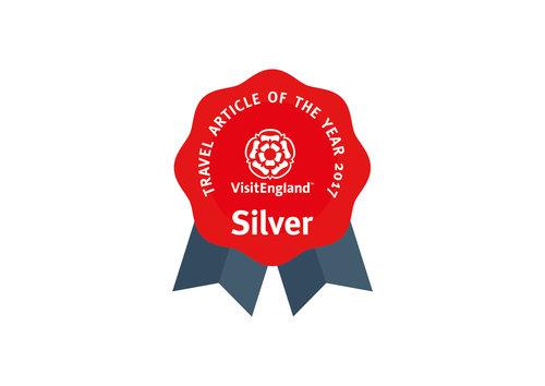 VE_TAOTY_Logo-SILVER.jpg