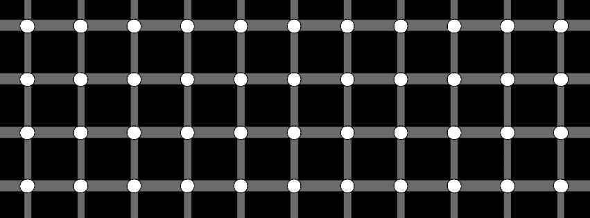 OpticalIllusion.png
