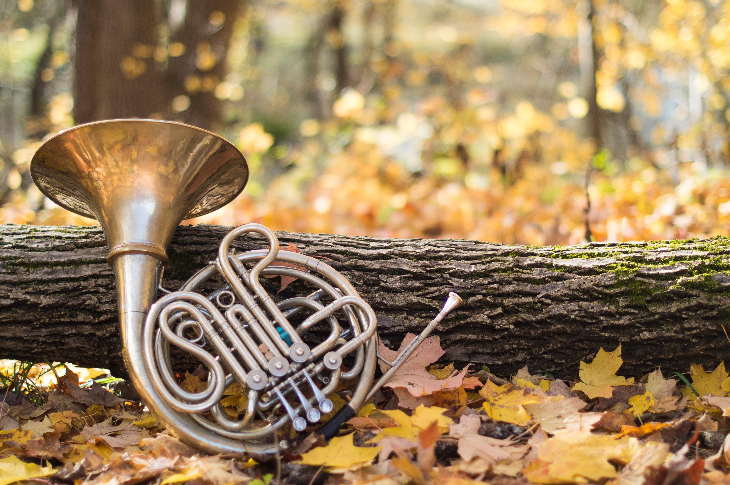 Horn2.jpg