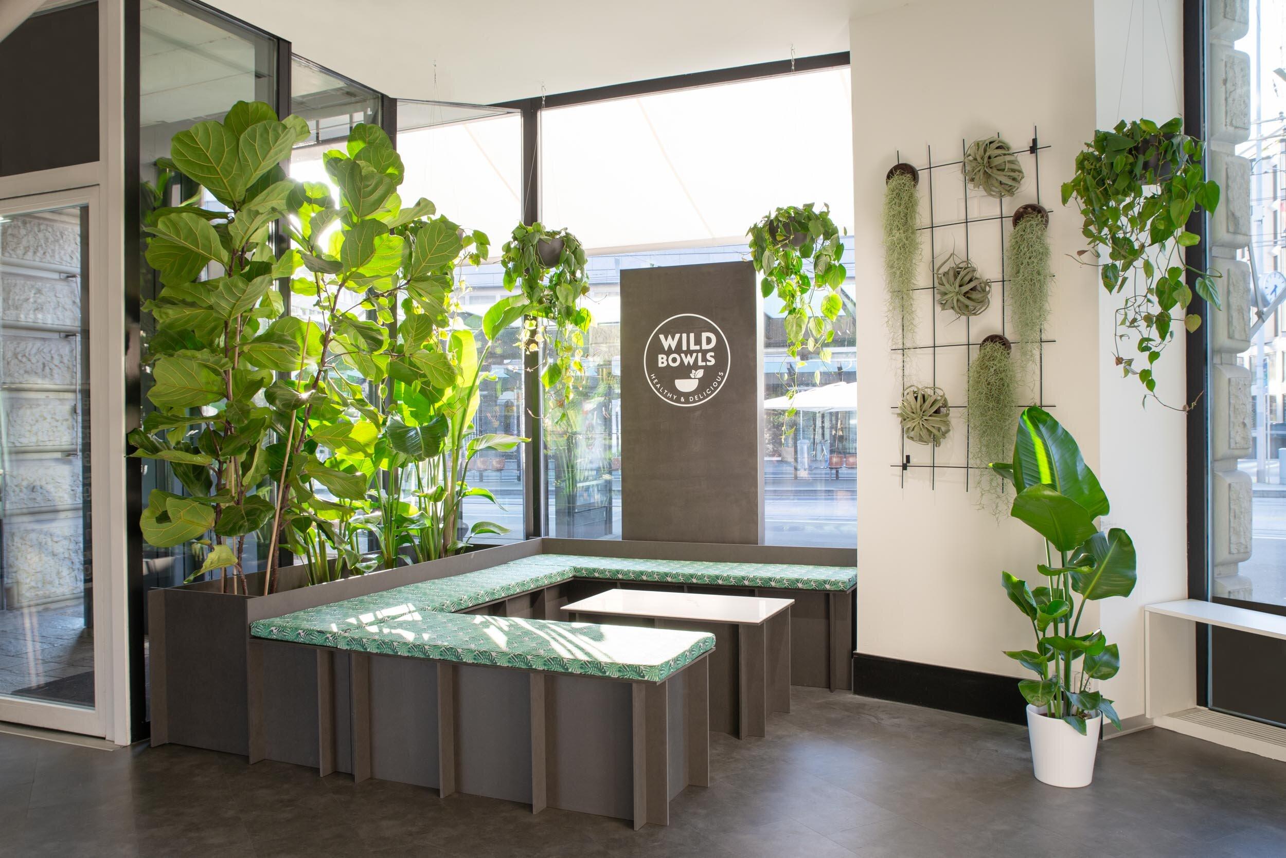 Cosmos Design   Biophilic Designstudio aus Zürich