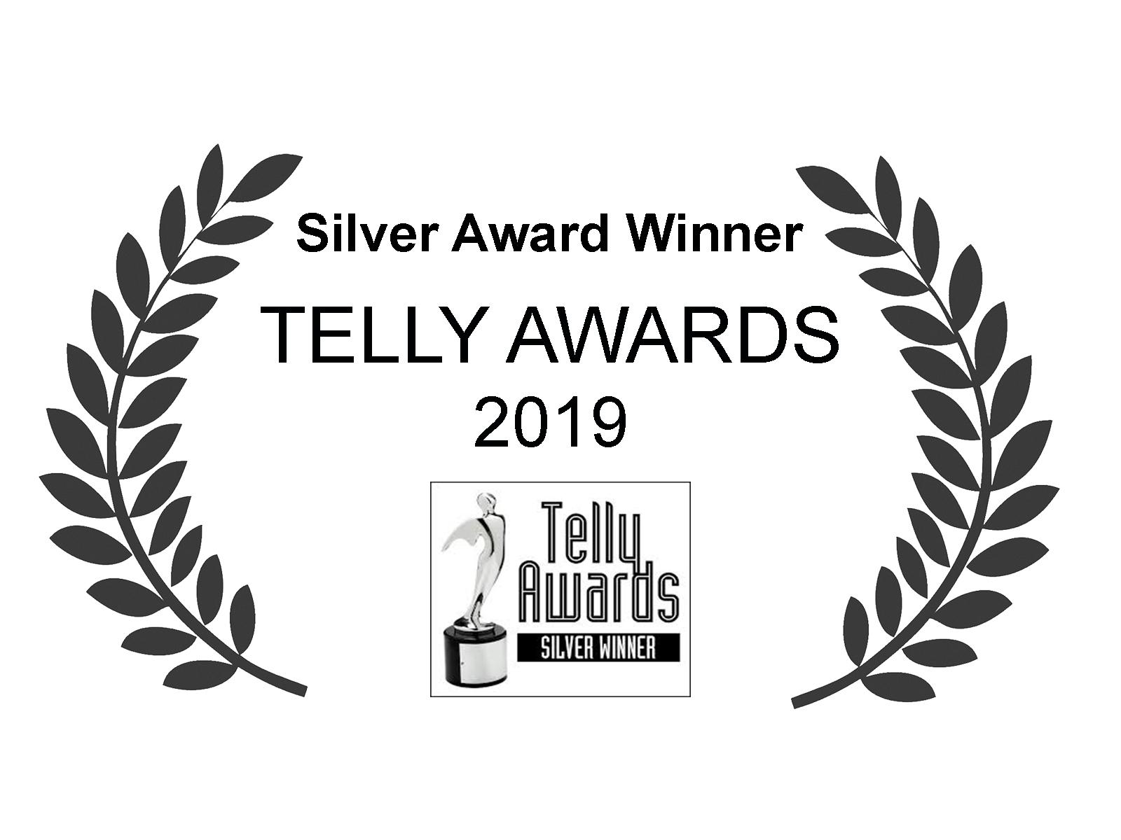 Telly Award Silver.jpg