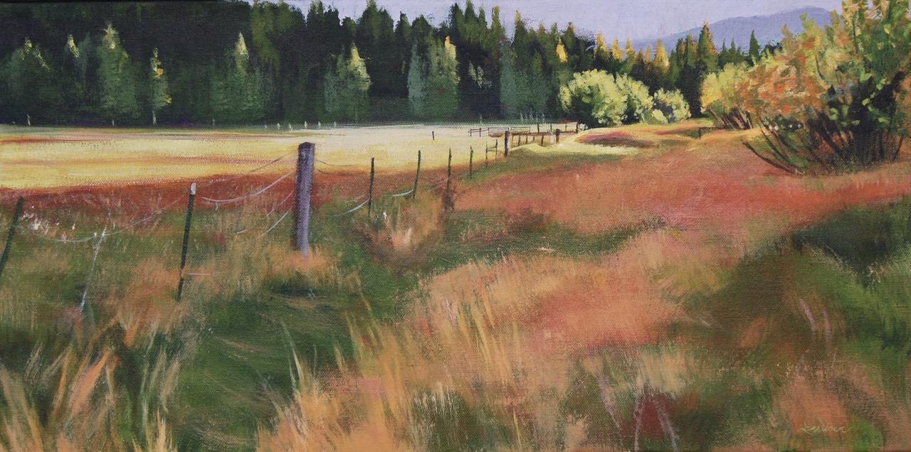 Low Light in the Meadow