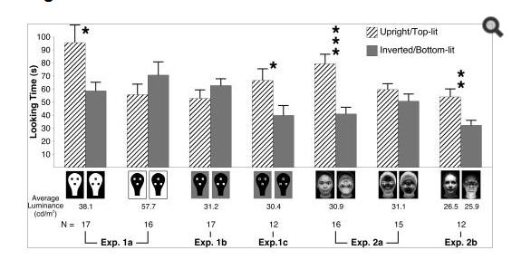 Figure 2. Newborns' preference of face shape stimuli (Farroni, Johnson, et al., 2005, p.17246).