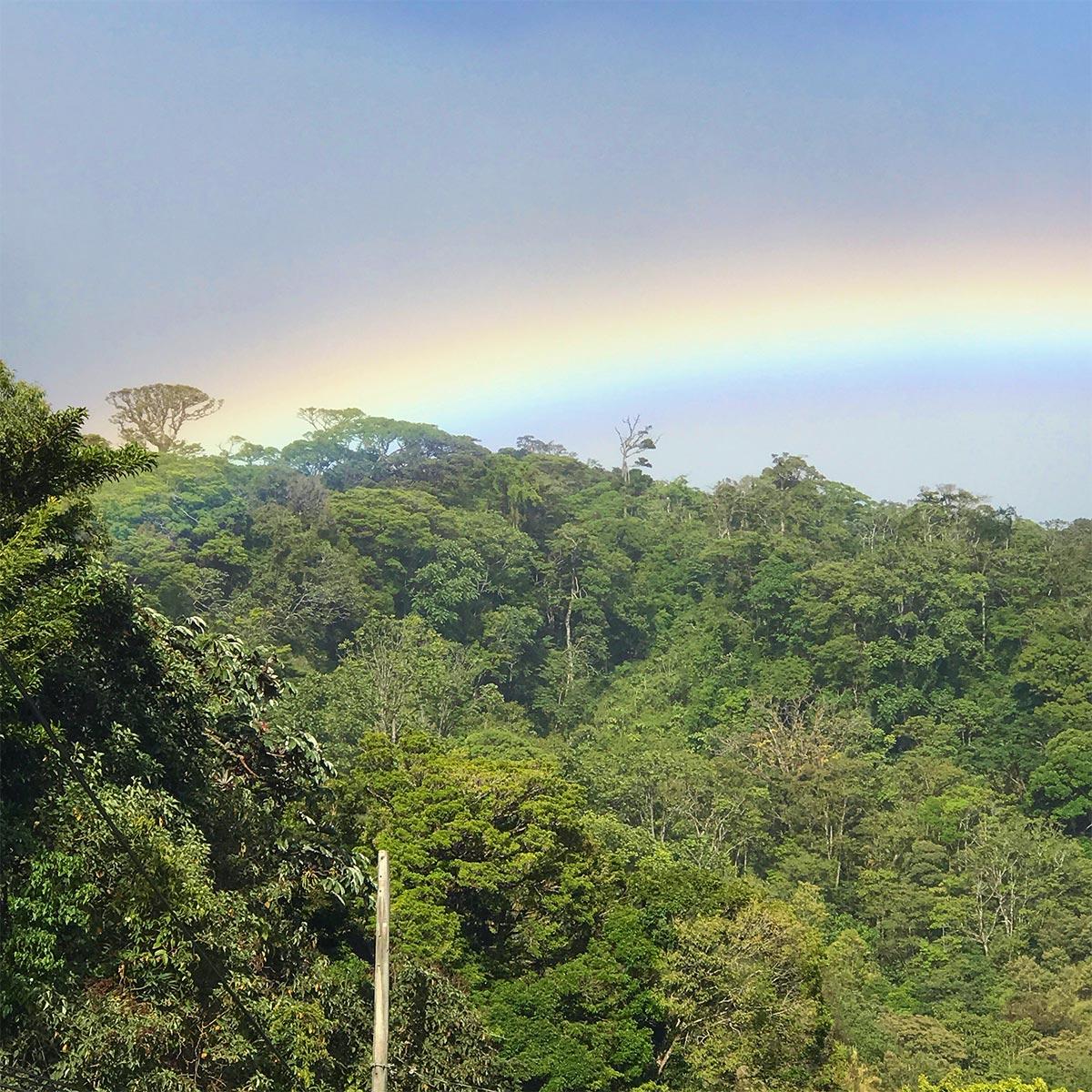 Monteverde-Cloud-Forest-Rainbow.jpg