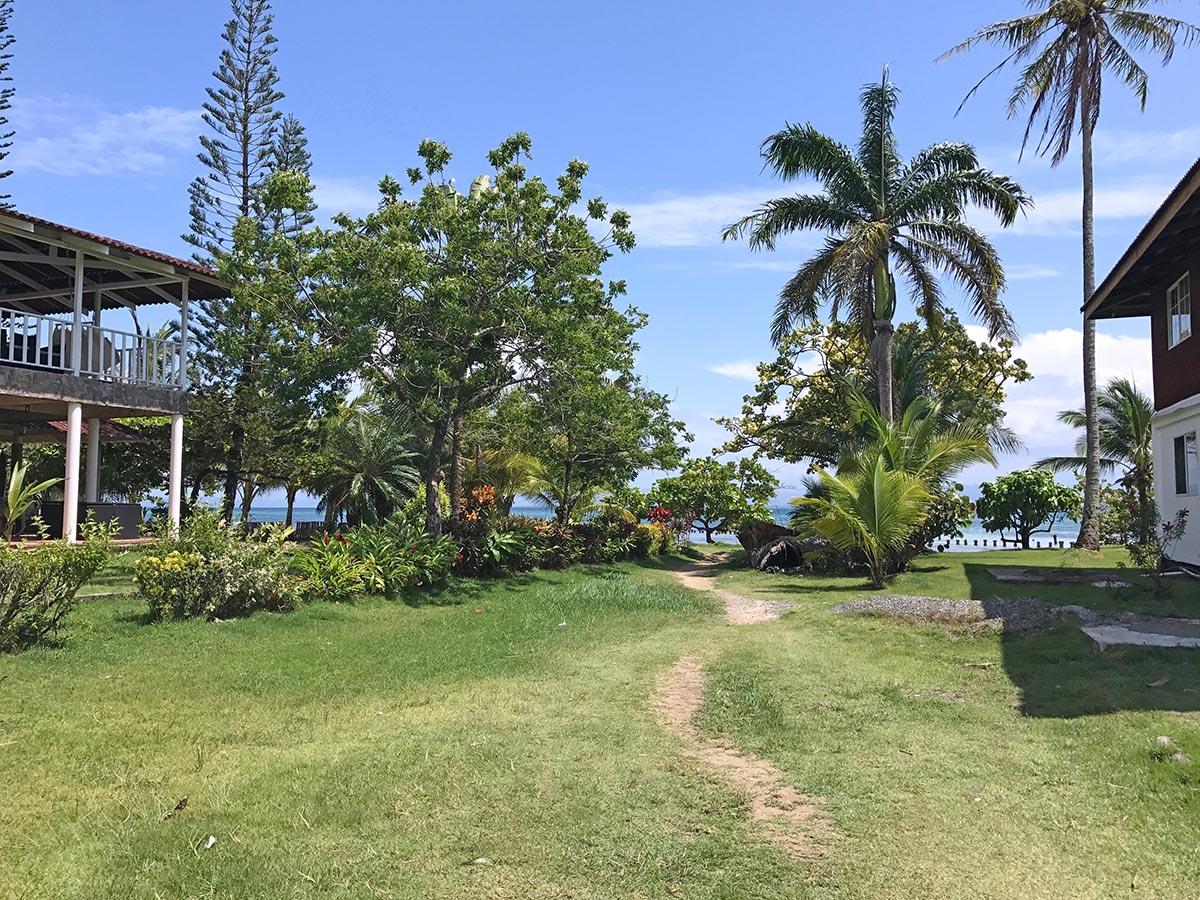 The path from Bocas del Drago beach to starfish beach