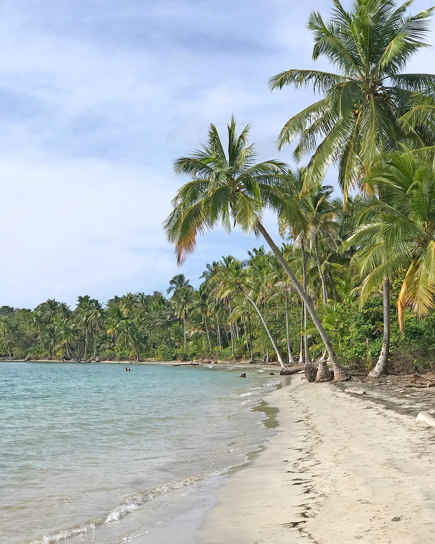 Starfish Beach or Playa Estrella on Isla Colon, Bocas del Toro, Panama