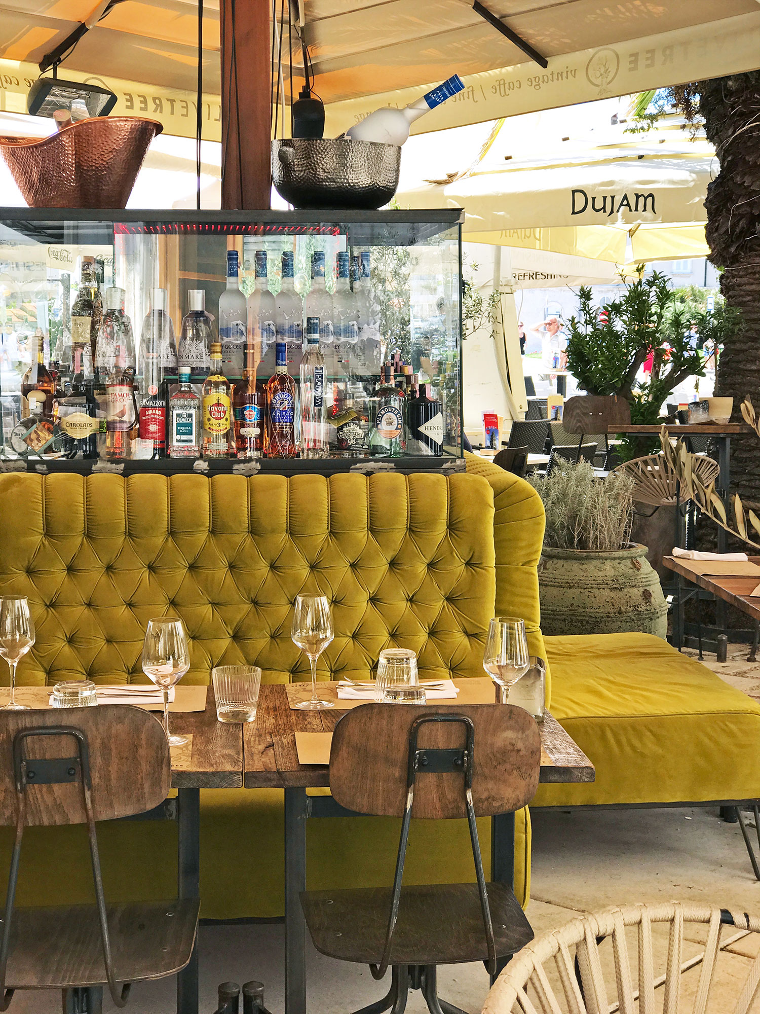 Split-Croatia-Olive-Tree-Restaurant.jpg