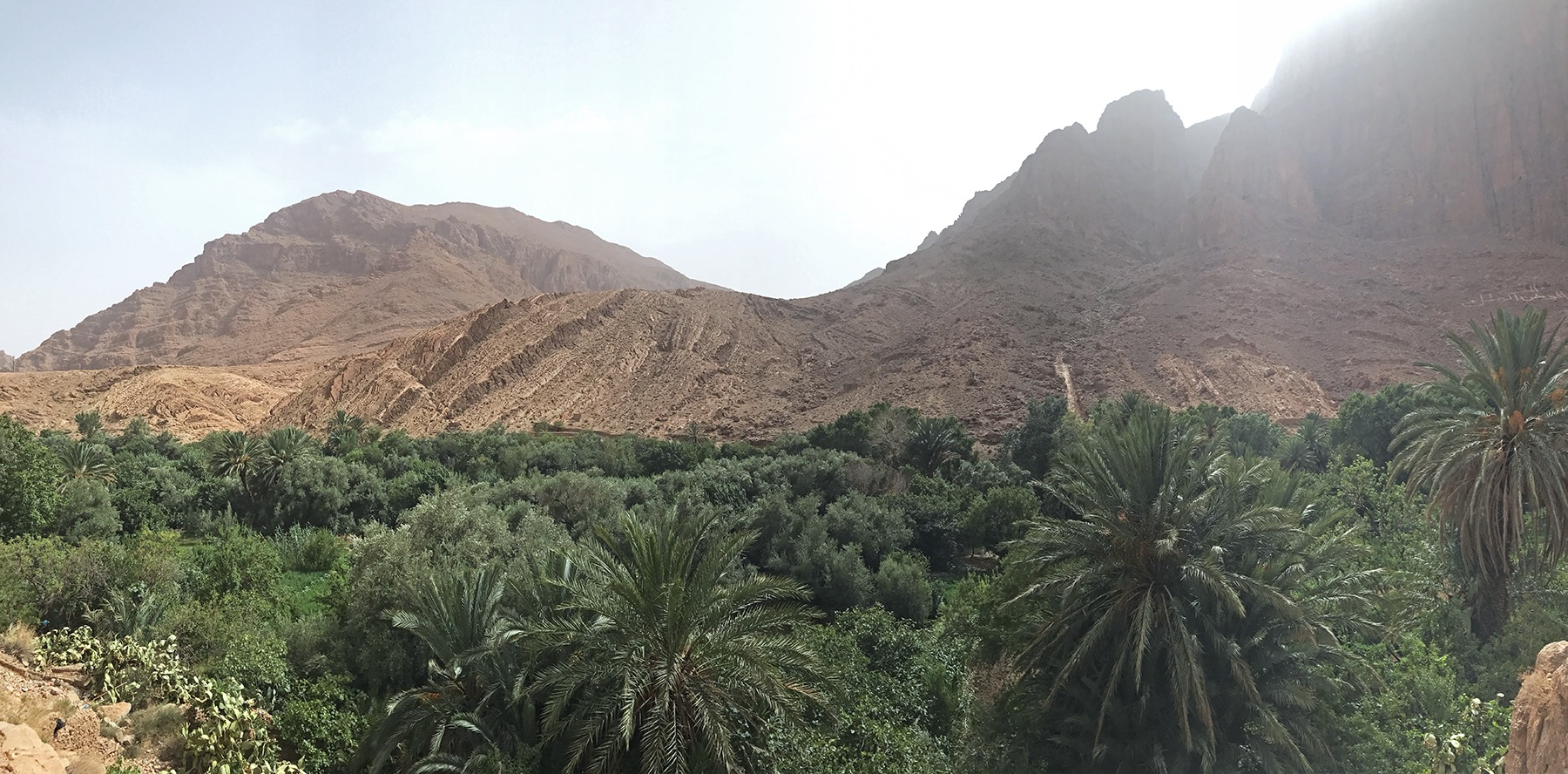 Hiking Morocco | Todra Gorge