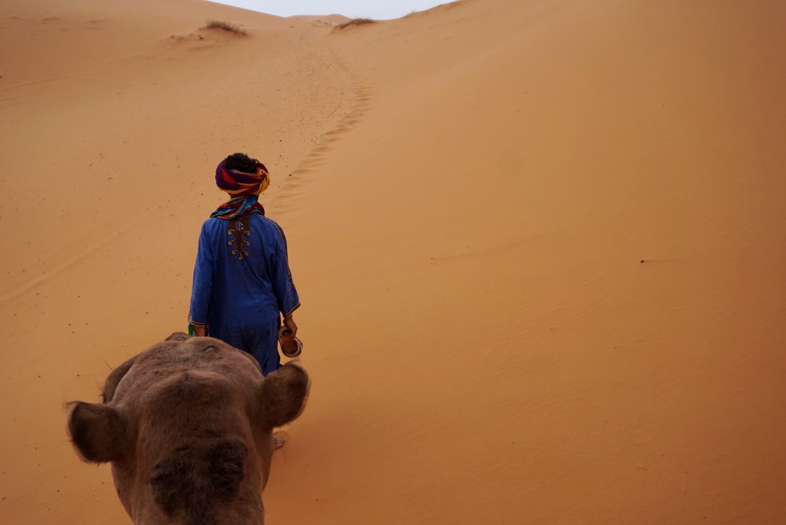 Sahara Desert Morocco camel trek | Photos of Morocco