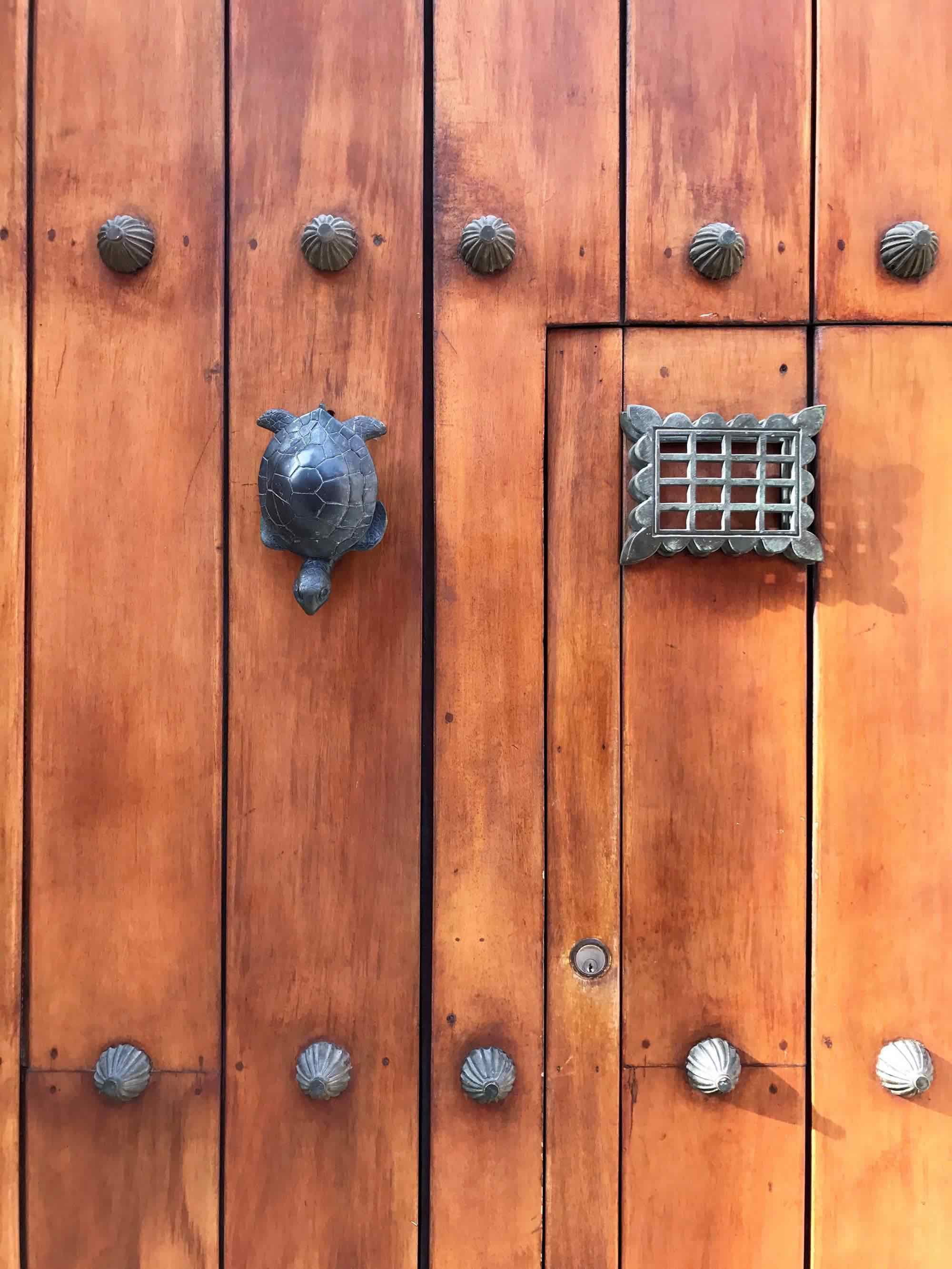 turtle door knocker in Cartagena, Colombia | pictures of Cartagena, Colombia