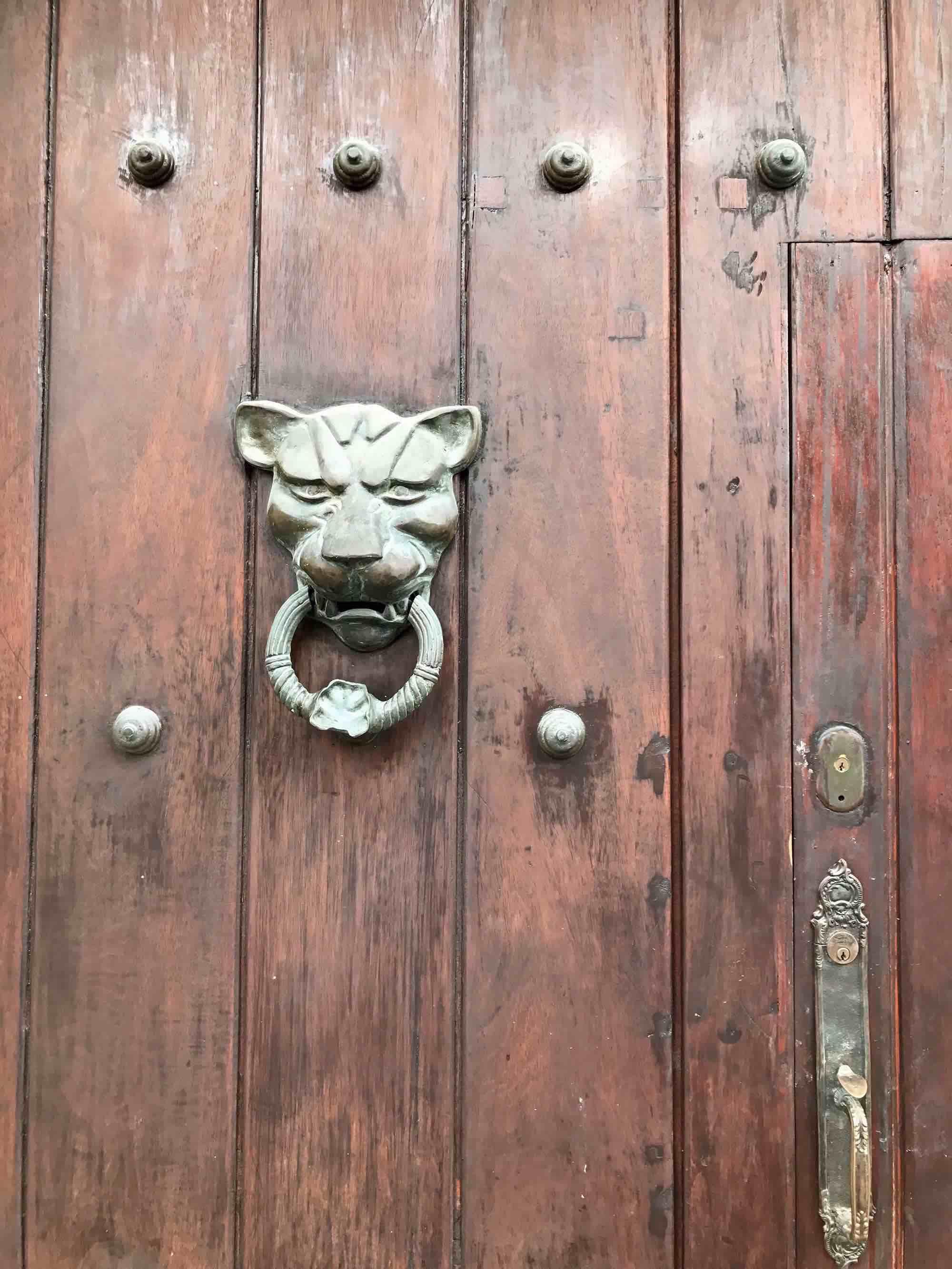 Lion door knocker | Doors and Door Knockers of Cartagena, Colombia | pictures of Cartagena, Colombia