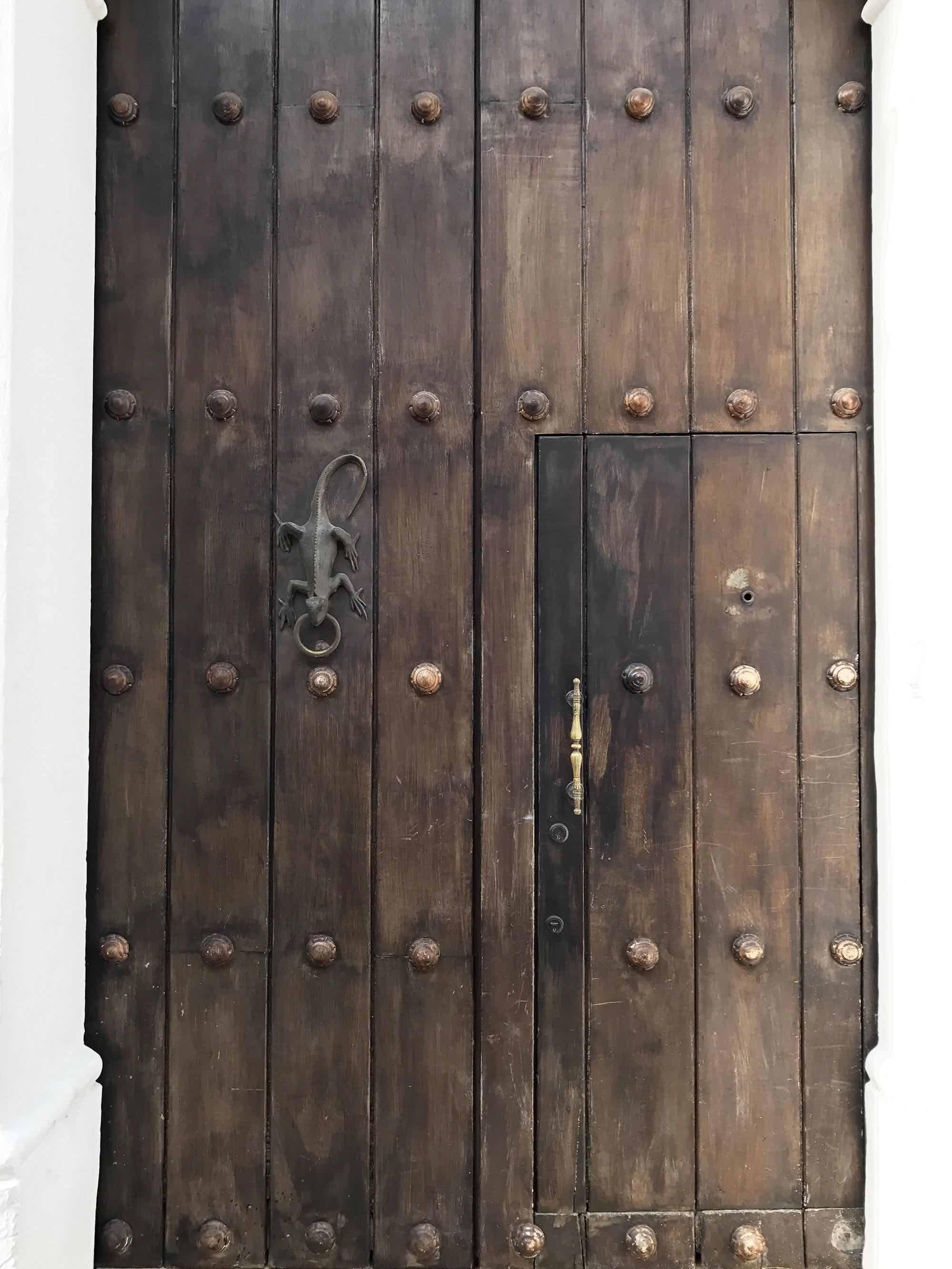 Lizard door knocker | Doors and Door Knockers of Cartagena, Colombia | pictures of Cartagena, Colombia