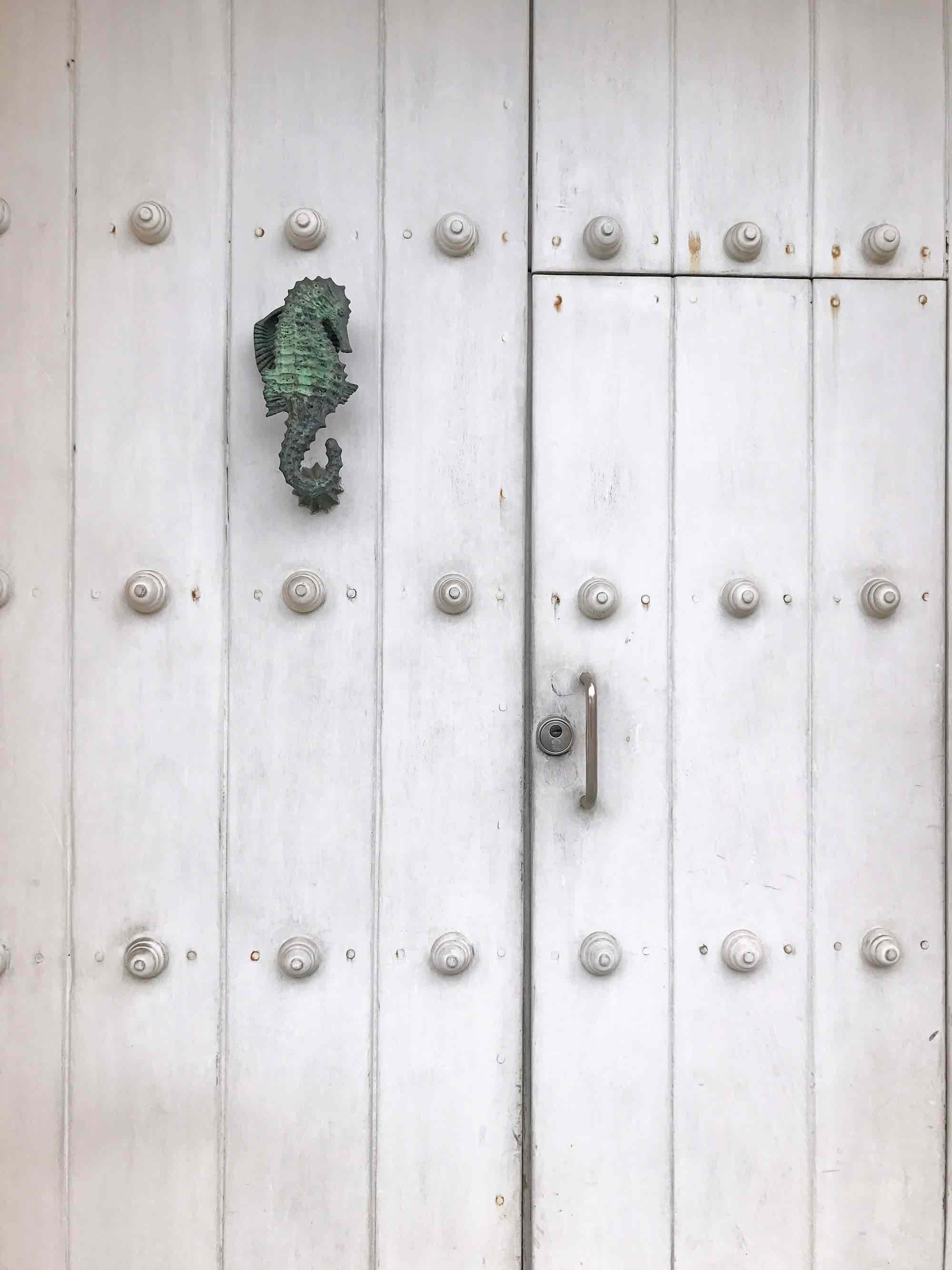 Seahorse door knocker | Doors and Door Knockers of Cartagena, Colombia | pictures of Cartagena, Colombia